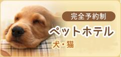 完全予約制 ペットホテル 犬・猫・ハムスター